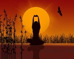 erotische thaise massages prive huis zoetermeer
