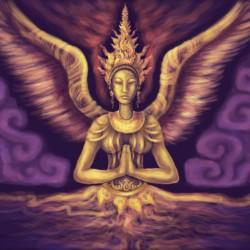 massage angel amsterdam super mooie vrouwen