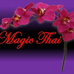 Magic-Thai Logo