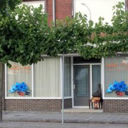 sabaitua.nl