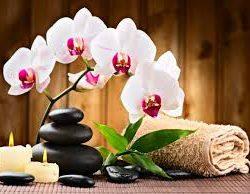 Hele lichaam massage